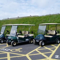 Mules & Golf Buggy Hire